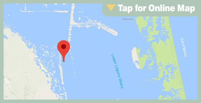 Port Mansfield HOTSPOT: Rincon de San Jose Shoreline