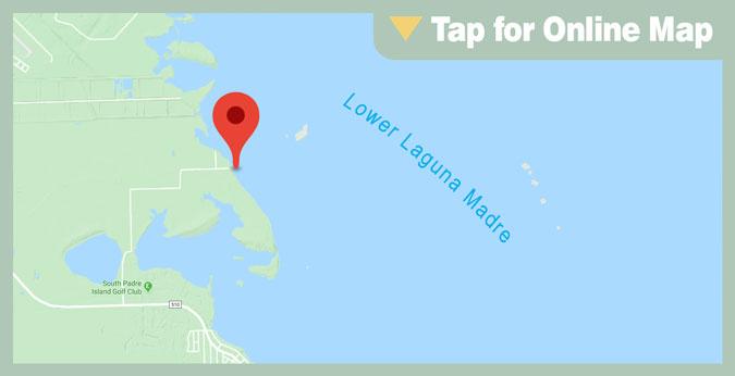 Lower Laguna Madre