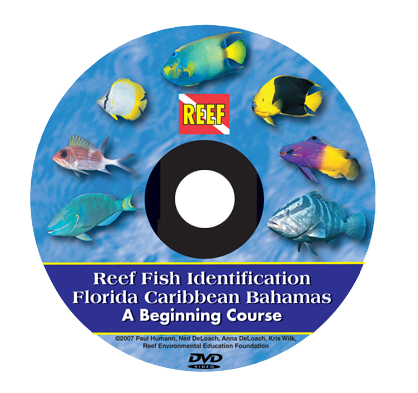 FishID course DVD cover