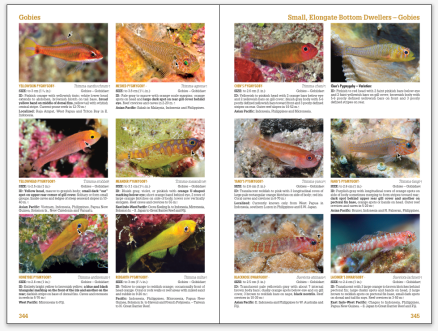 Reef Fish Tropical Pacific page spread 02