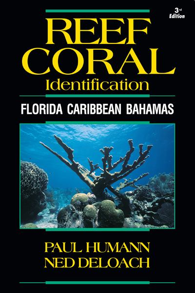 Reef Coral Identification - Florida Caribbean Bahamas front cover