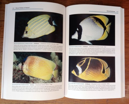 Shore Fishes of Hawaii page spread 02