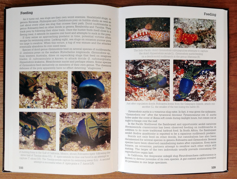 Nudibranch Behavior Marine Life Books