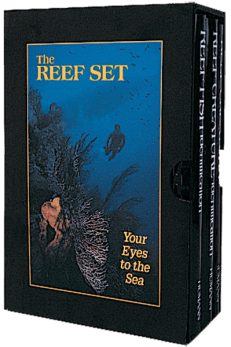 Reef Set Box with 3 books