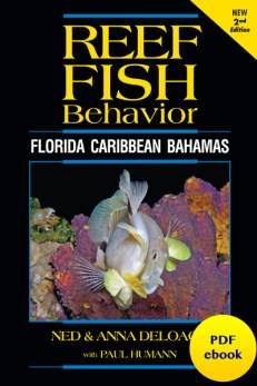 Reef Fish Behavior ebook