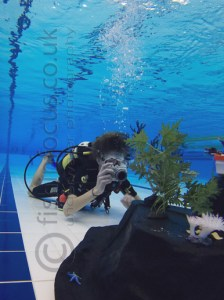 fishinfocus compact camera underwater photography course UK Mario Vitalini