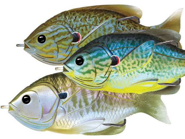 fishgear-12