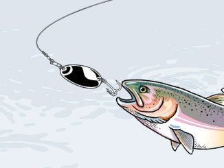 Fishing by boys 39 life the ultimate kids fishing site for Funny fishing lures