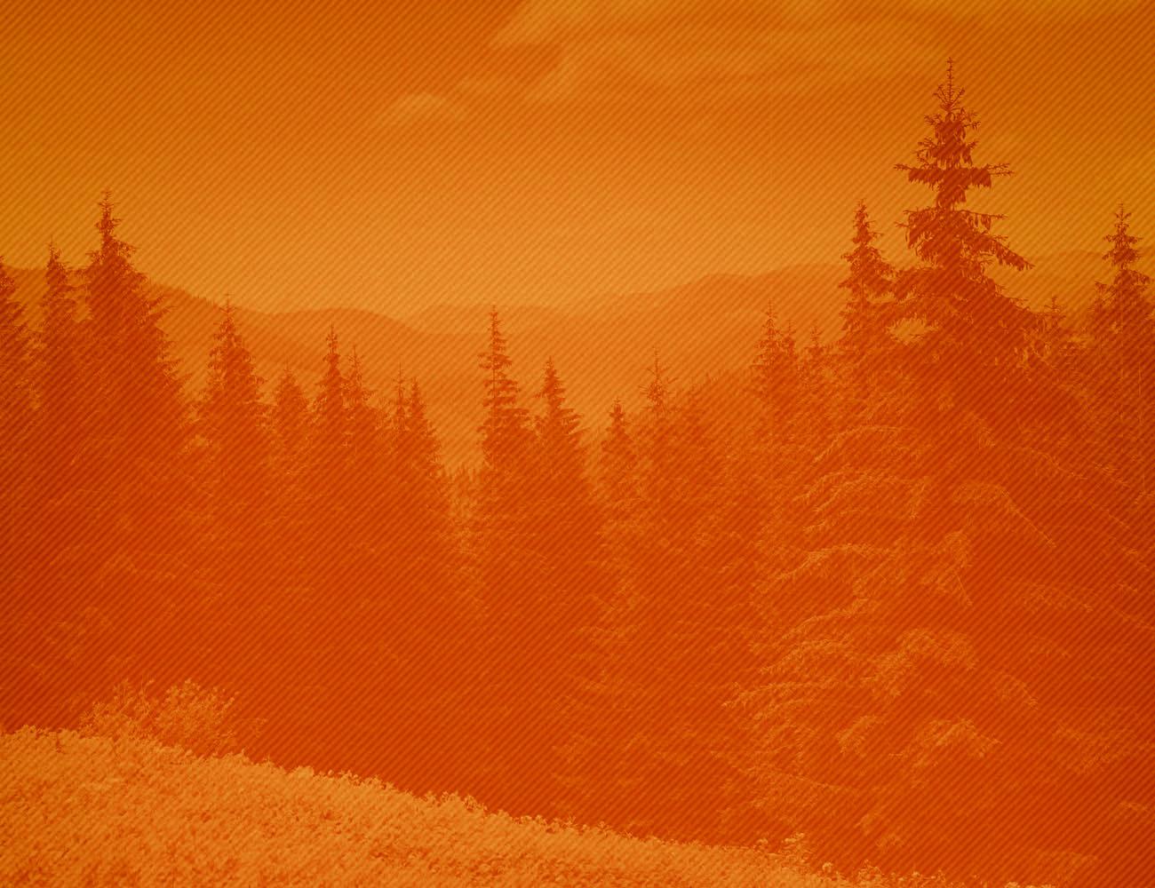 fishing-background-orange