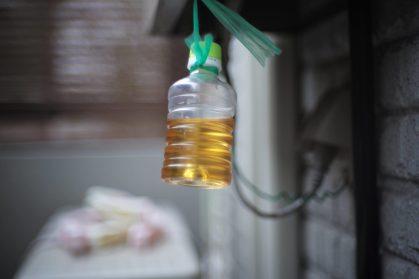 木酢液でハチ対策