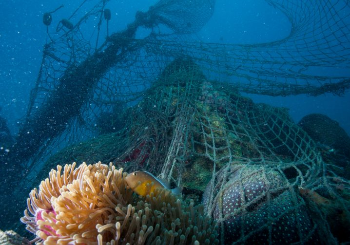 A large underwater ghost net caught in a coral reef and stretching up to the surface of the sea