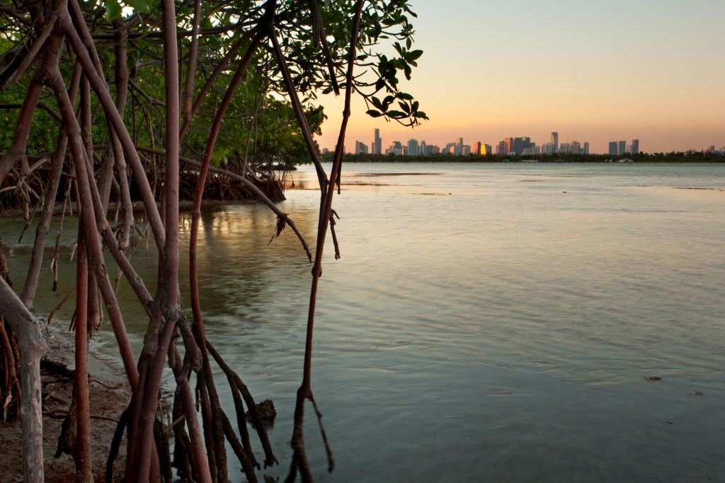 A view across Biscayne Bay toward Miami