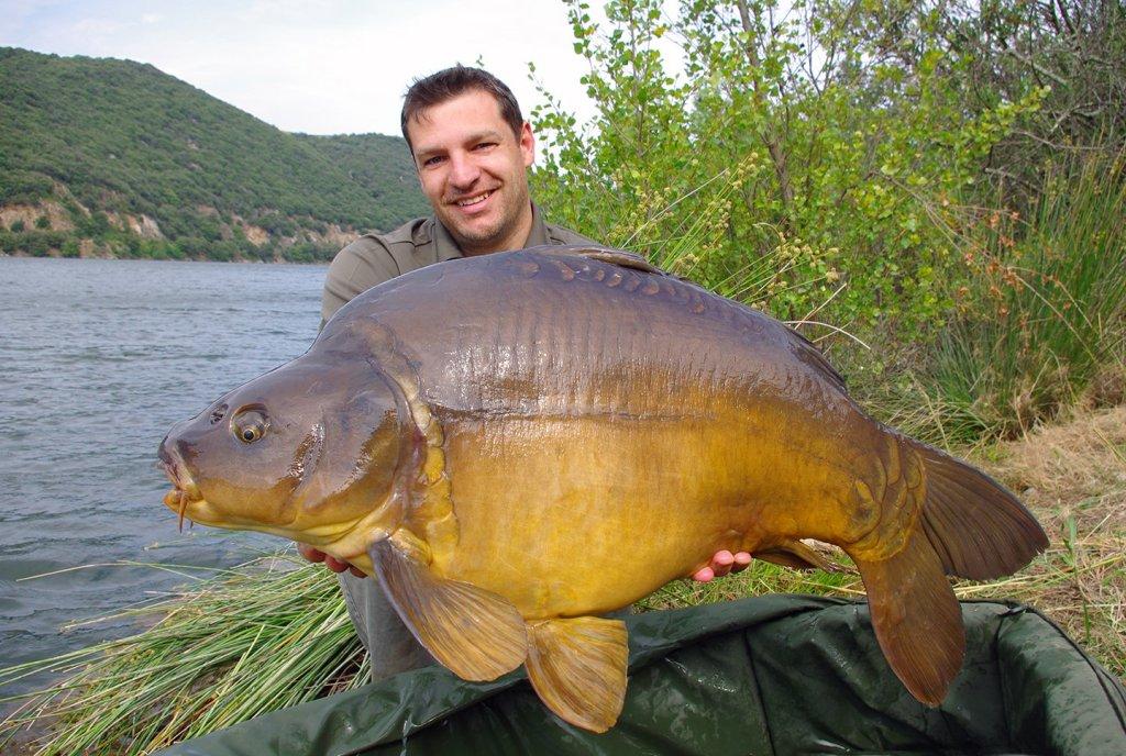 A happy carp fisherman holding a giant mirror carp by a lake