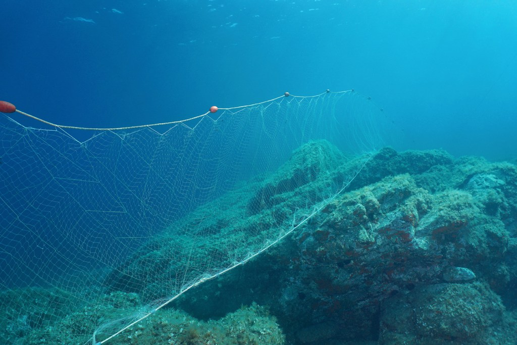 A large gillnet stretched along the bottom of the sea