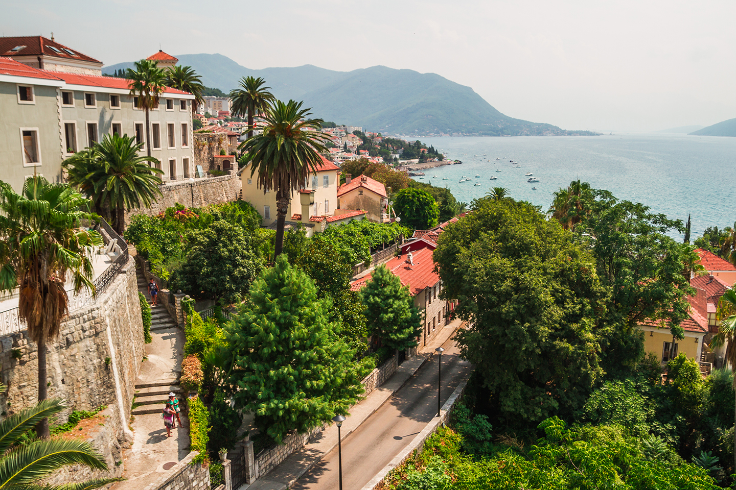 Buildings and palm trees in Herceg Novi, Montenegro, a pretty fishing and holiday town