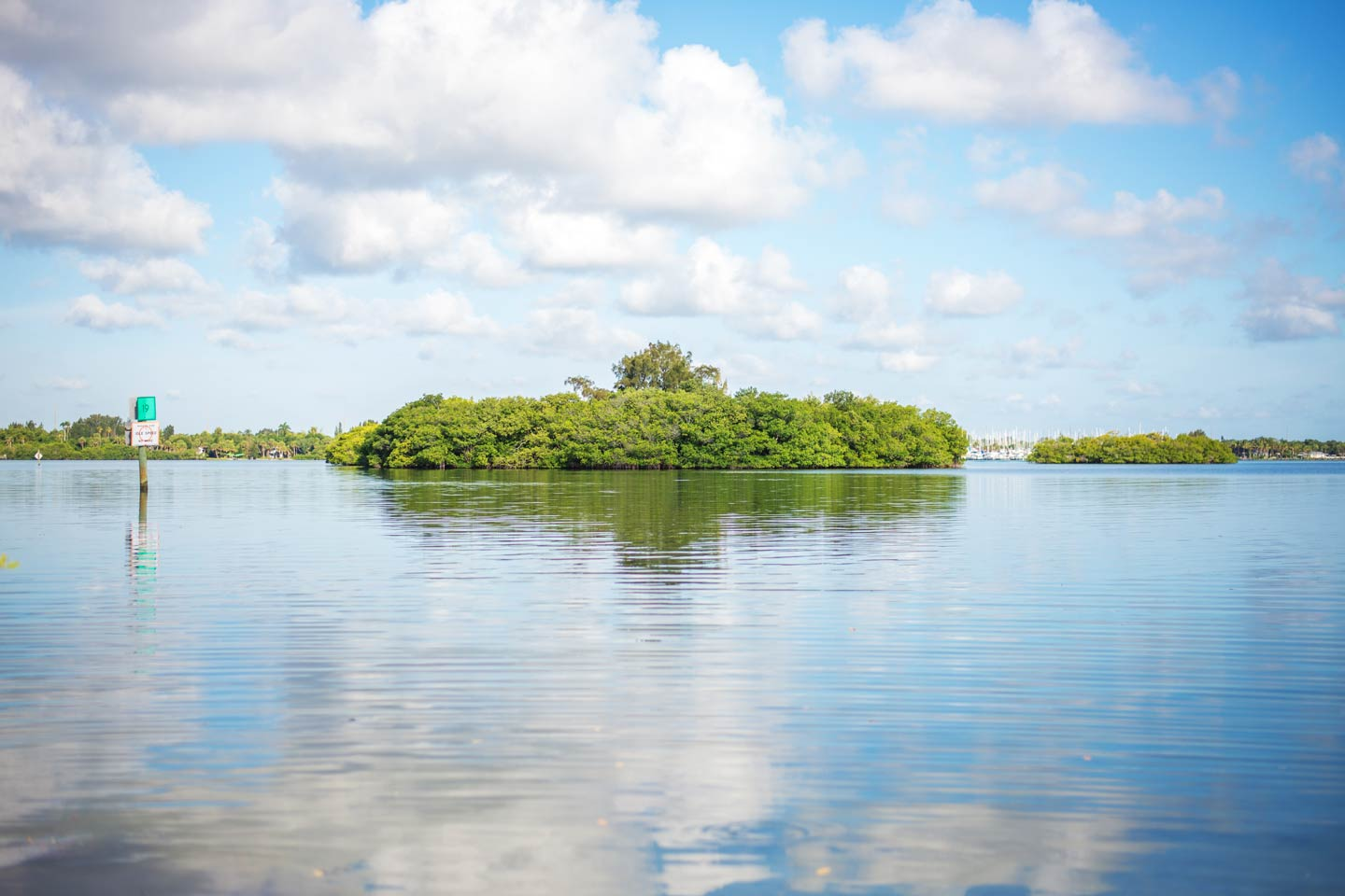 A view of a spoil island in the Indian River Lagoon System on a sunny day