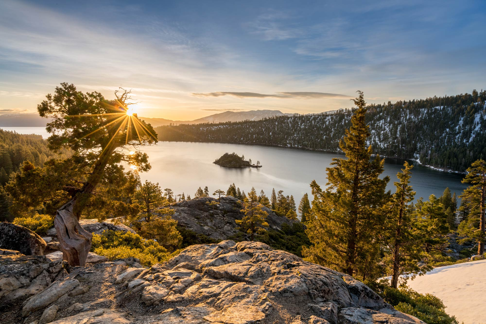 A shore of Lake Tahoe with vegetation and trees