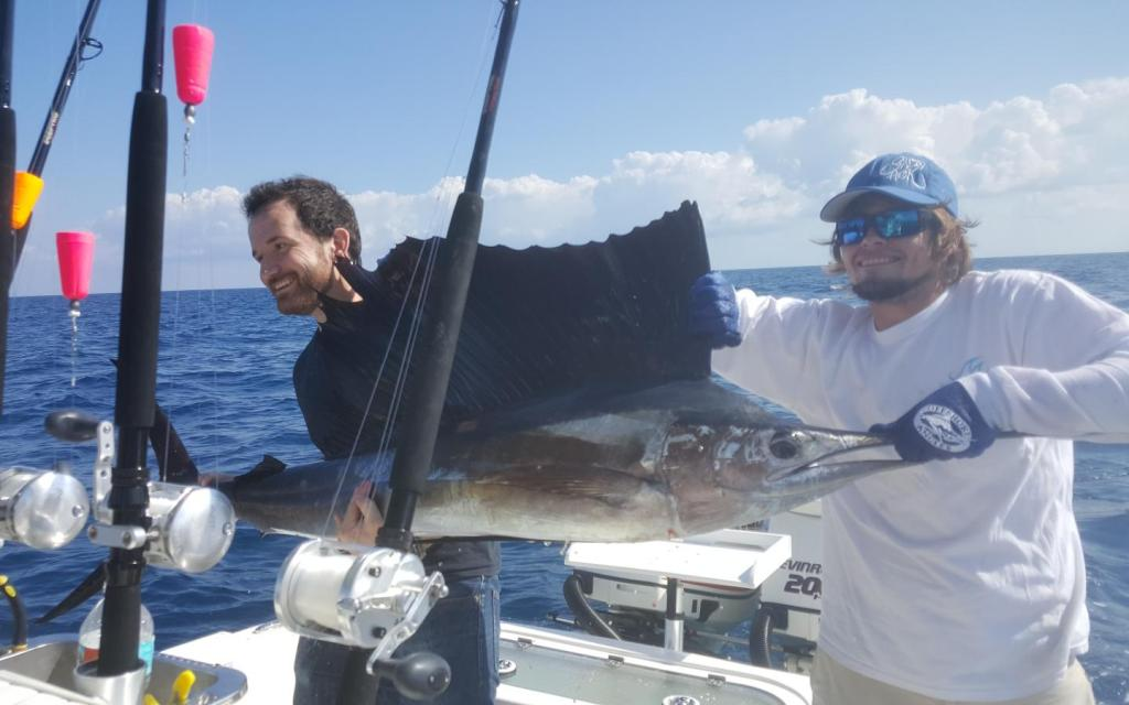 Sailfish held by anglers on a boat