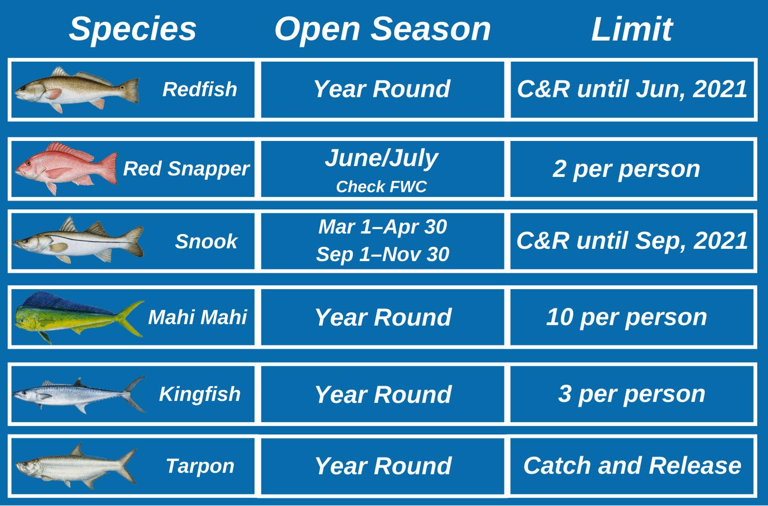 An infographic showing seasons and regulations for top Redfish, Red Snapper, Snook, Mahi Mahi, Kingfish, and Tarpon in Boca Grande, Florida