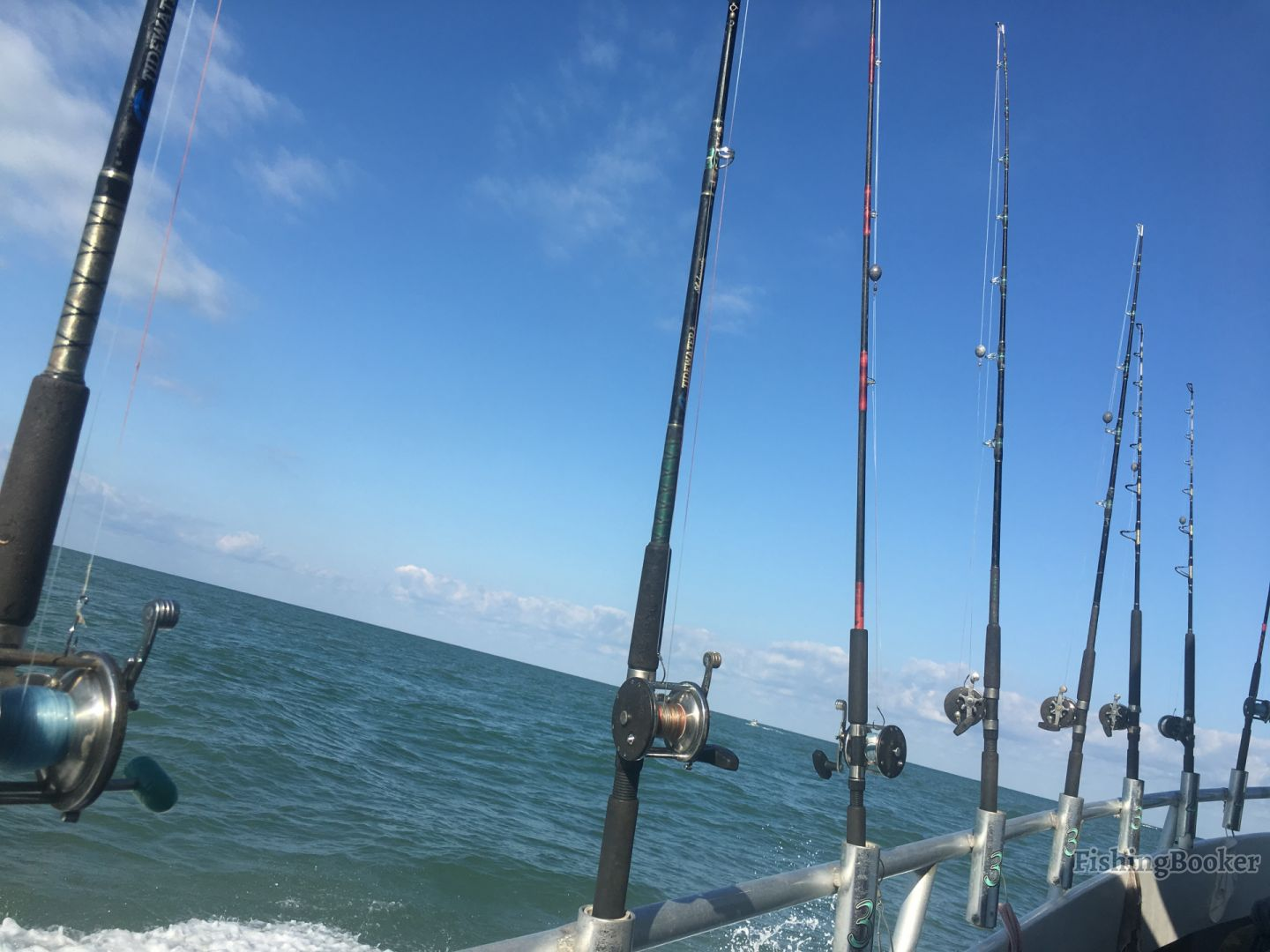rods on a party boat