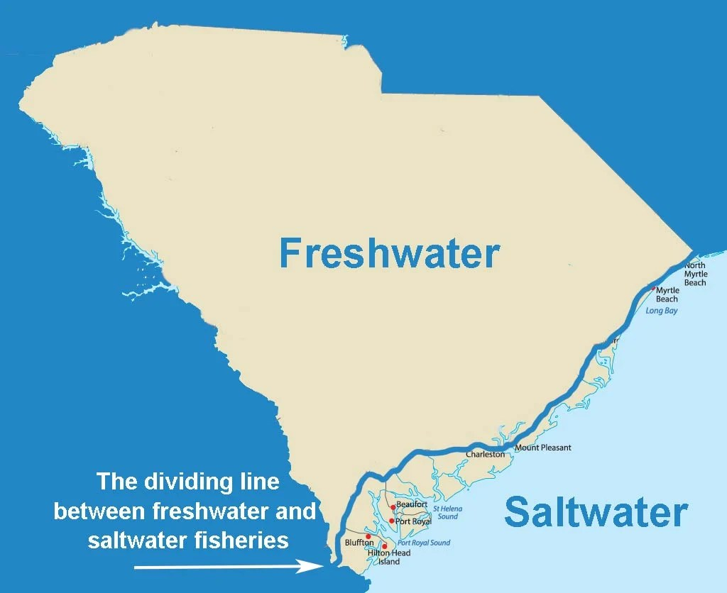 An infographic showing the dividing line between freshwater and saltwater fisheries on a map of South Carolina