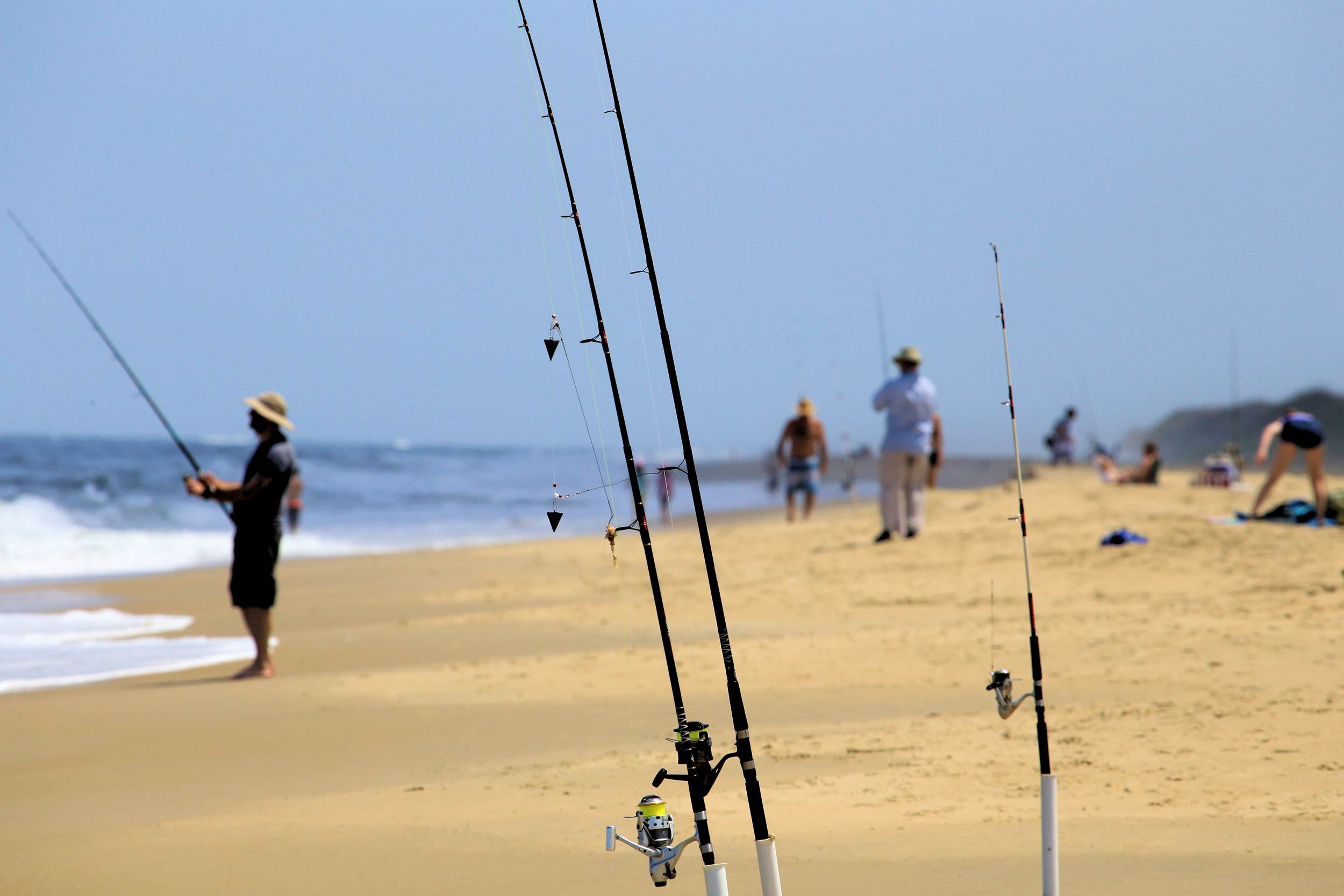 A photo of people surf fishing on the beach