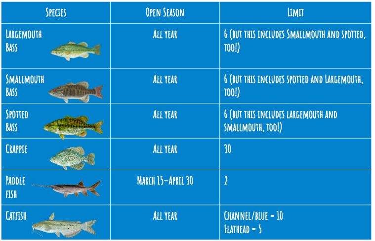 An infographic that shows the limit you can keep for each fish.
