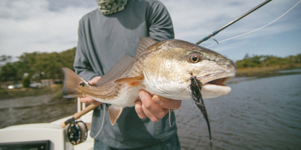 An fly fisherman holding up of a Redfish in one hand and a fly fishing rod in the other