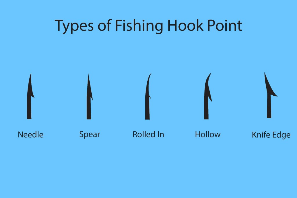 A simple infographic showing the five main varieties of fishing hook point. They are: Needle, Knife Edge, Spear, Rolled In, and Hollow