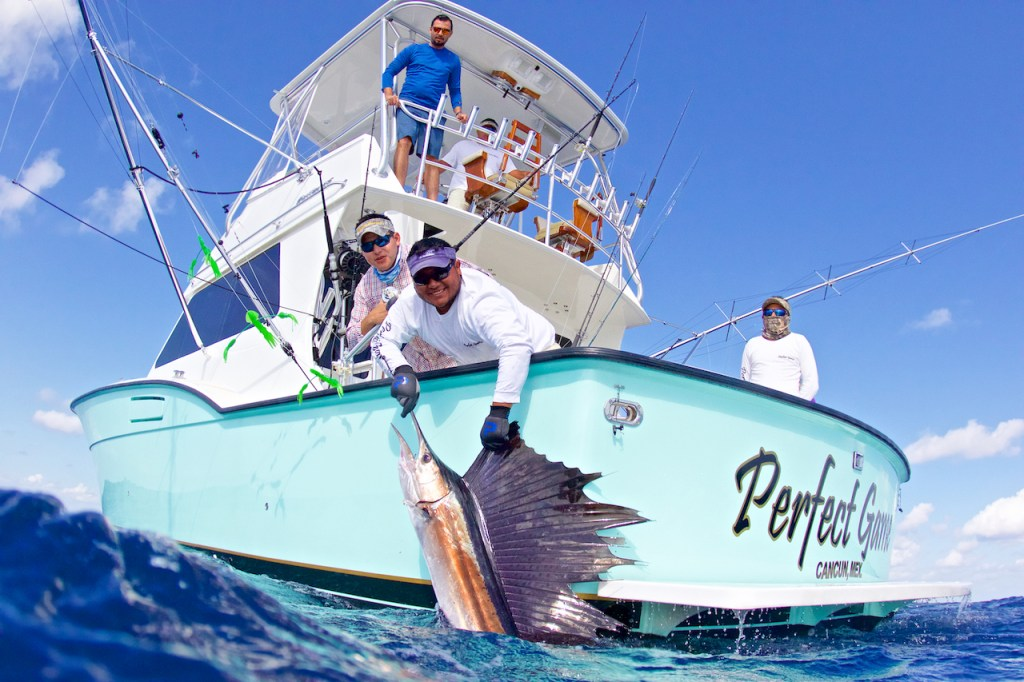 anglers pulling a Sailfish onboard near Cancun, Mexico