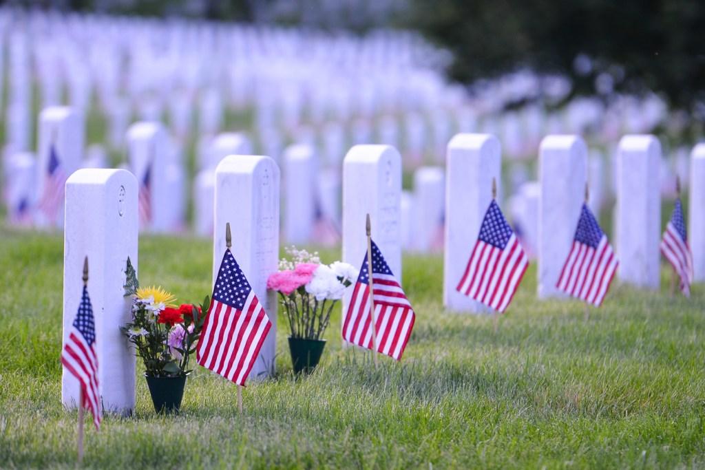 flags aligned on arlington cemetery in washington dc