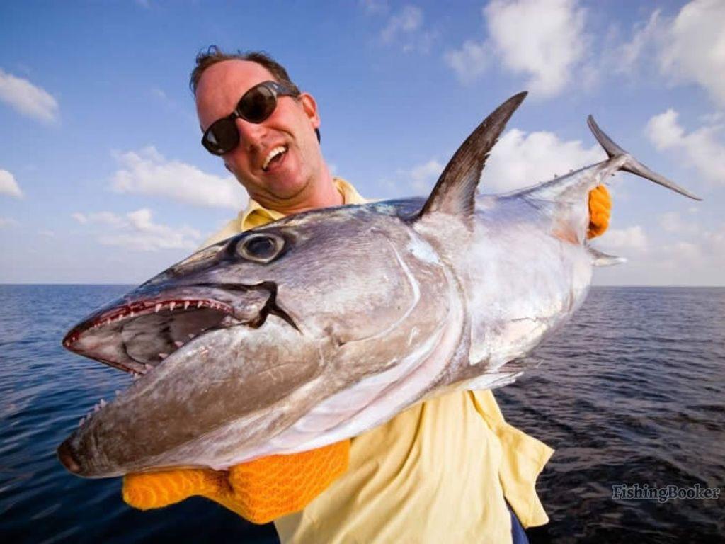 an angler holding a wahoo fish
