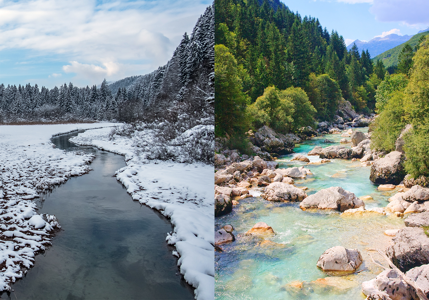A snowy winter river scene next to a sunny summer river scene, with trees from both scenes meeting at the top.