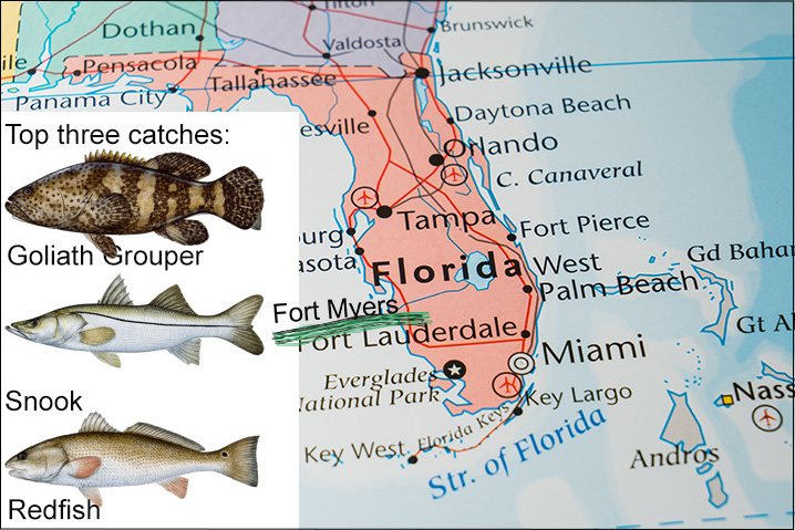 Florida map showing Fort Myers and best three fish species to catch there: Goliath Grouper, Snook, and Redfish