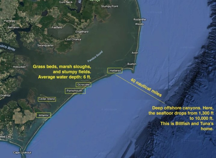 pamlico sound fishing spots and hatteras offshore canyons
