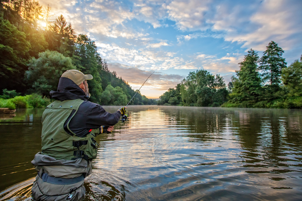 an angler casting on a river surrounded by lush greenery