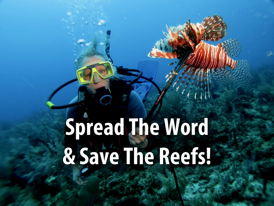 Stopping the Lionfish Invasion: Spread the word