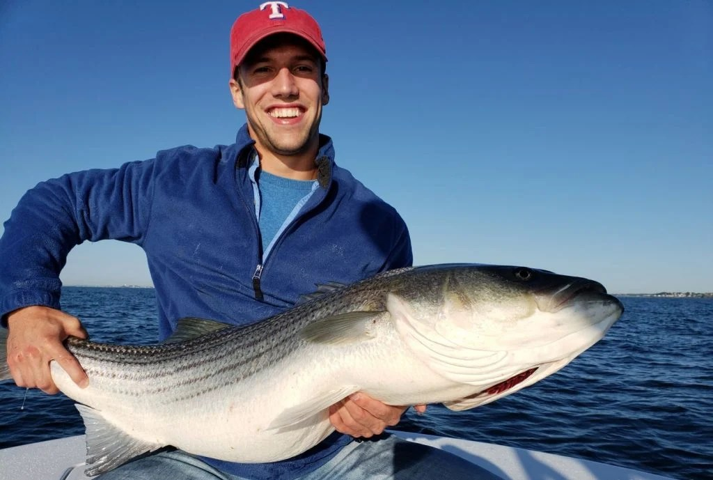 An angler with a Striped Bass in his hands