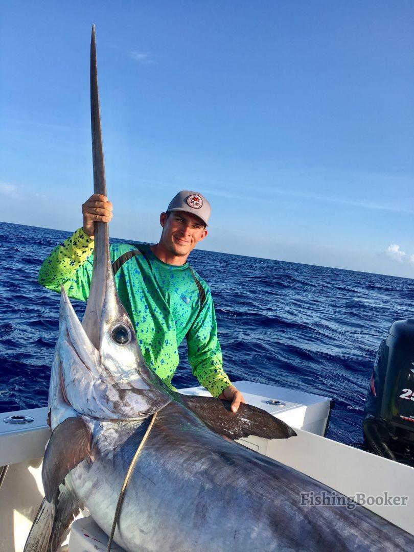 Daytime Swordfish Tactics That Work Like a Charm