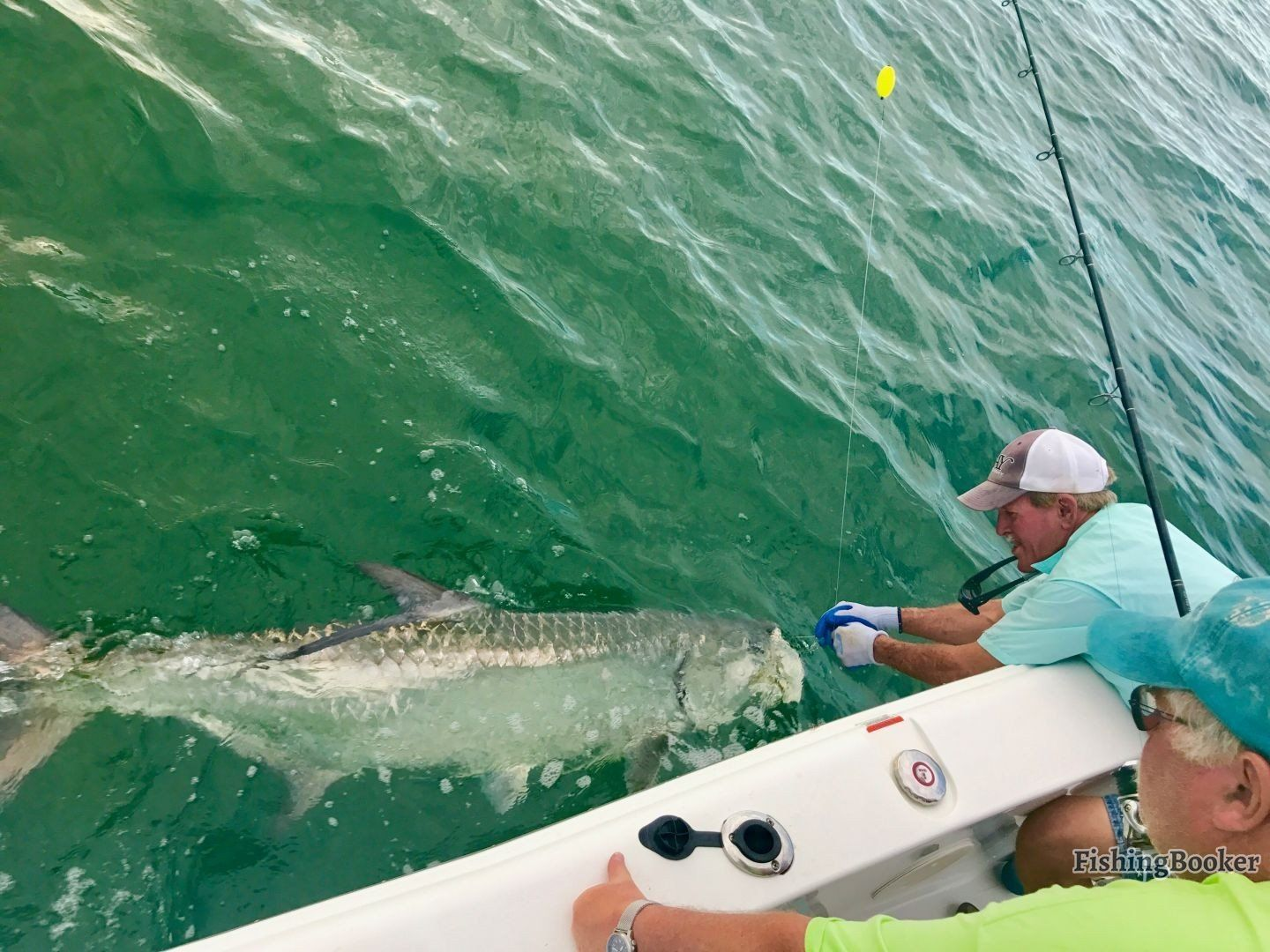All You Need to Know About Tarpon Fishing in Florida