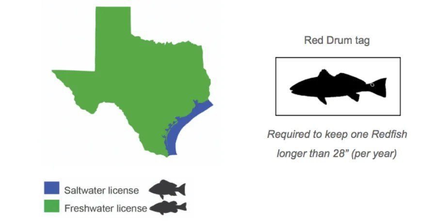 Planning To Buy A Texas Fishing License Here S What You Need To Know