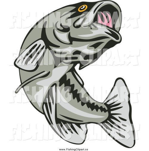 small resolution of bass fish clipart black and white