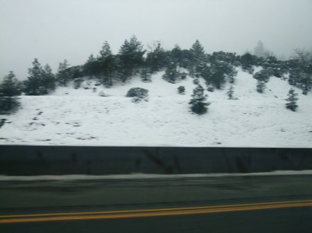 Snow around Dunsmuir