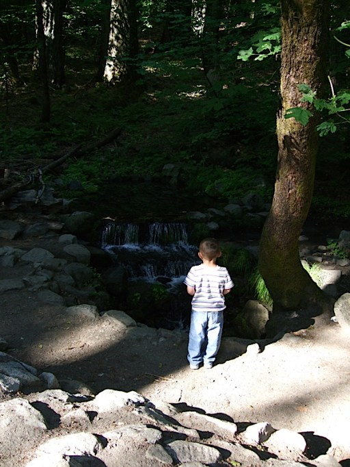 Checking out Fern Spring.