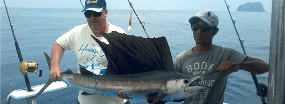Sailfish caught off Phuket 2015