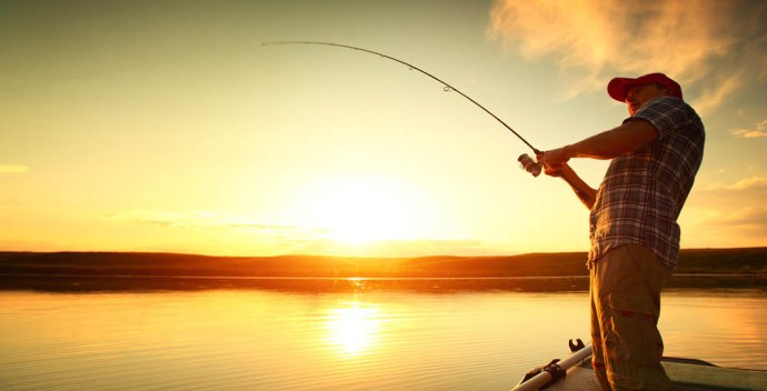 best fish finders under 500 - Header Image