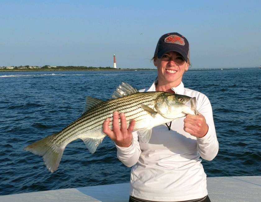 Aimee Wool caught summertime striped bass on LBI this past weekend fishing with Captain Steve of Reel Fantasea.