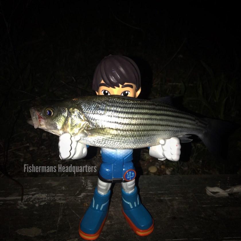 Miles from Tomorrowland had fun fishing LBI.