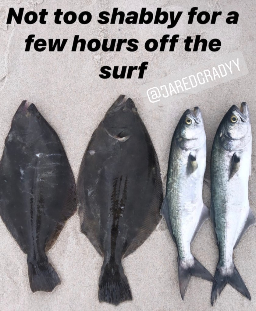 "Jared Grady reported, ""Not too shabby for a few hours off the surf. Two keeper fluke and two cocktail blues."""