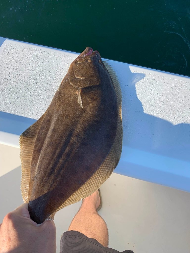 Summer flounder fishing is fun and flounder is good eats!